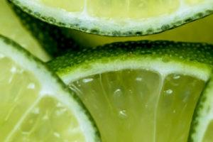 maxifinca_frutas_exportacion_colombia